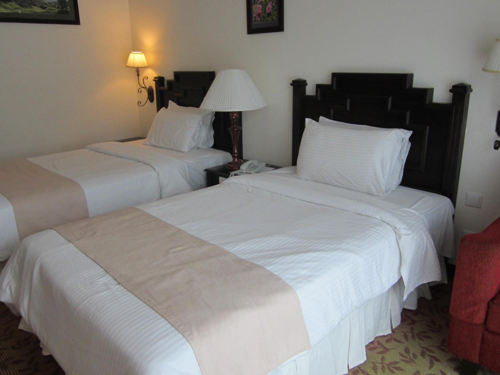 Review first day di hotel de 39 la ferns cameron highlands for Color design hotel
