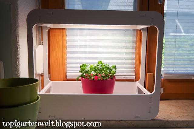 Kräutergarten in der Küche mit Beleuchtung - Gartenblog Topfgartenwelt