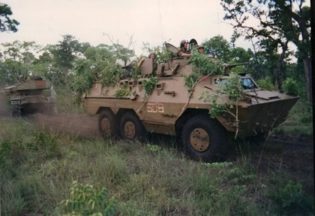 http://1.bp.blogspot.com/-OrsZmPq57ww/UU2vjoHU67I/AAAAAAAAAJg/9PypedeaTzc/s640/ratel_20-et_olifant_dans_bush.jpg