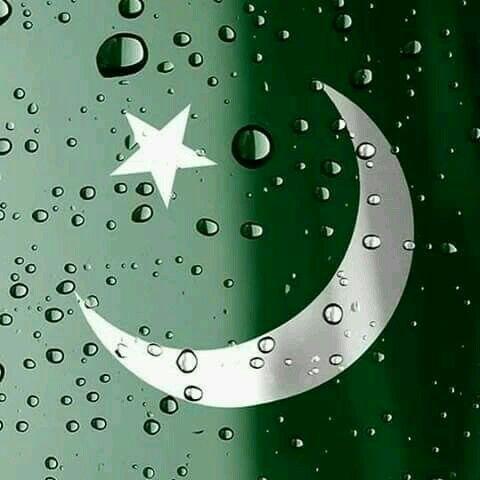 Pakistani%2BFlag%2BHoly%2BDay%2B%252846%2529