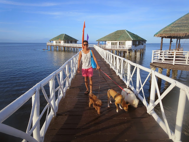 walking with our dogs at stilts calatagan