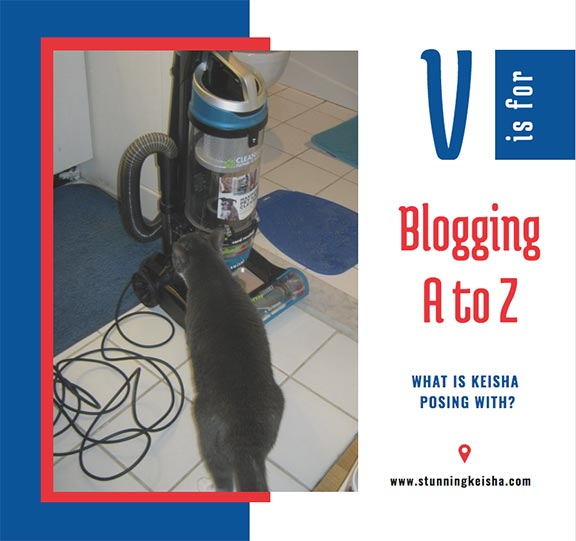 Blogging From A to Z: V is for …