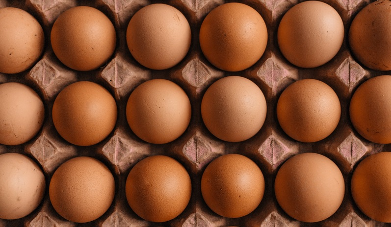 can you dye brown chicken eggs?