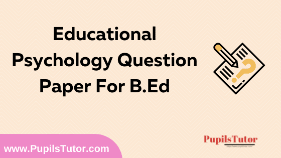 Educational Psychology Question Paper For B.Ed 1st And 2nd Year And All The 4 Semesters In English, Hindi And Marathi Medium Free Download PDF | Educational Psychology Question Paper In English | Educational Psychology Question Paper In Hindi | Educational Psychology Question Paper In Marathi