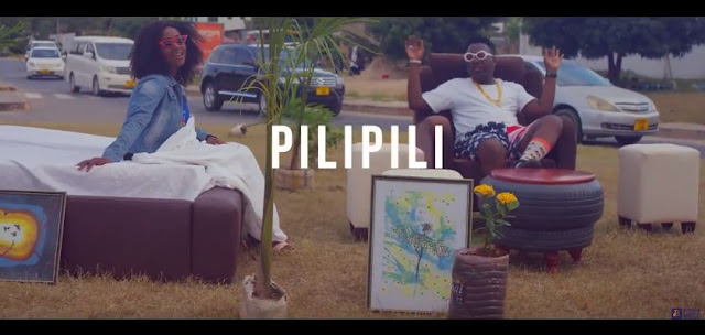 VIDEO | Matonya Ft Kareen - Pilipili | Download Mp4 [Official Video]