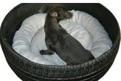 http://manualidadesreciclables.com/15326/cama-de-perrito-con-rueda-reciclada