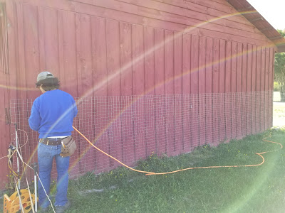 applying wire mesh to the barn walls to prevent donkey damage