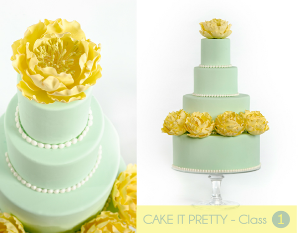 Free DIY Cake Decorating Blog Course - BirdsParty.com