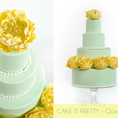 Free DIY Cake Decorating Blog Course