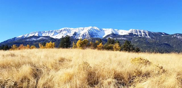Adventurous Blue Mountain