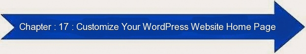 Next: Customize Your WordPRess WebSite Home Page