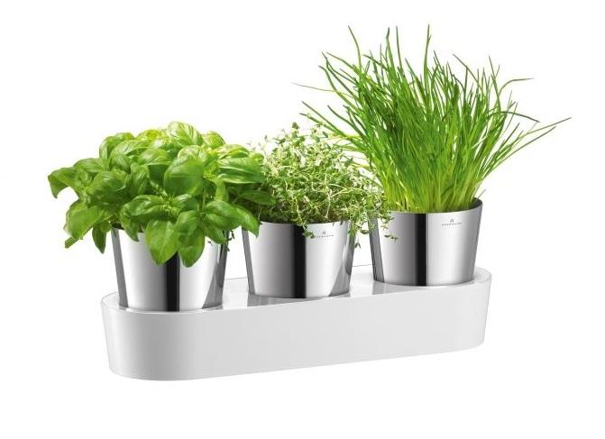 Design Na Stole Nowoczesne Doniczki Na Zioła Auerhahn Herbs
