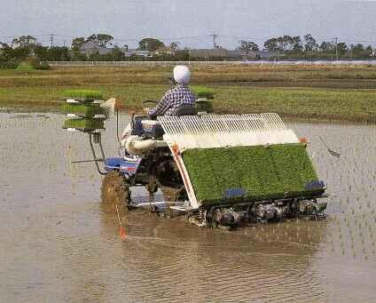 Bantuan Alat Mesin Pertanian