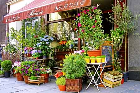 Karachi Gifts And Flowers Flower Shops In Karachi Buy The
