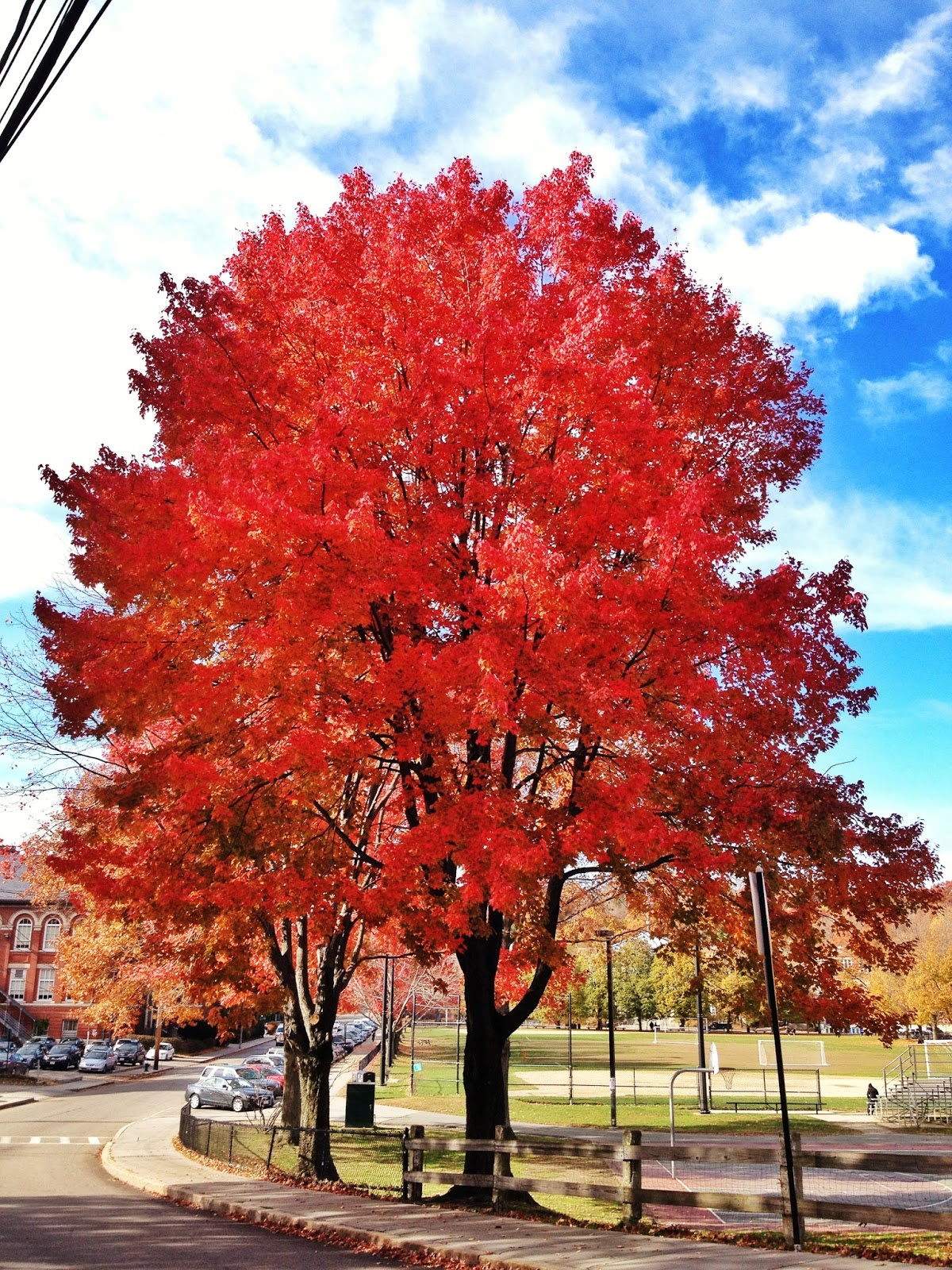Best New England Fall Foliage
