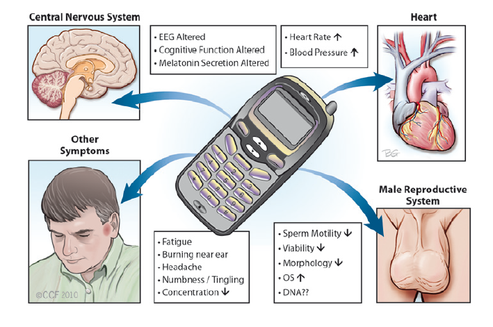 Children and Cell Phones: Is Phone Radiation Risky for Kids?