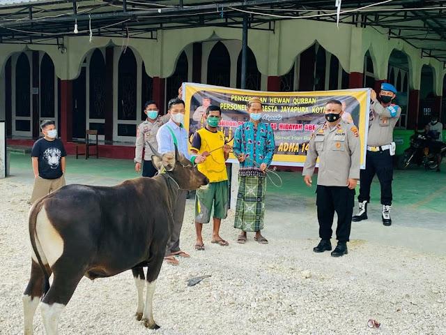 Jelang Idul Adha, Polresta Kota Jayapura Serahkan 5 Hewan Kurban ke Masjid dan Ponpes