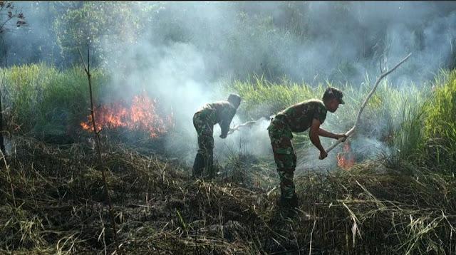 Hampir Melahap Sekolah, Kebakaran Lahan Kebun Di Padamkan Satgas Yonif 713