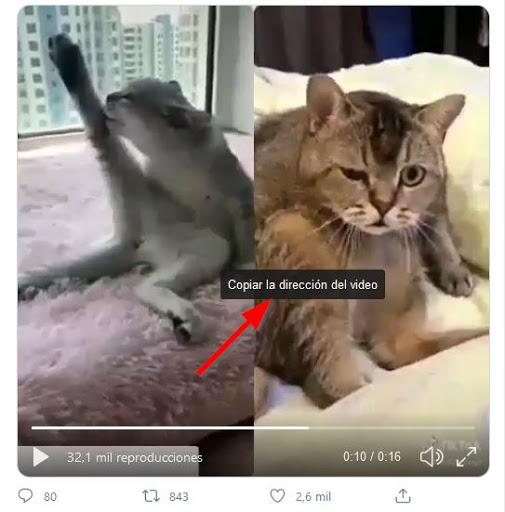 Descargar vídeos de Twitter