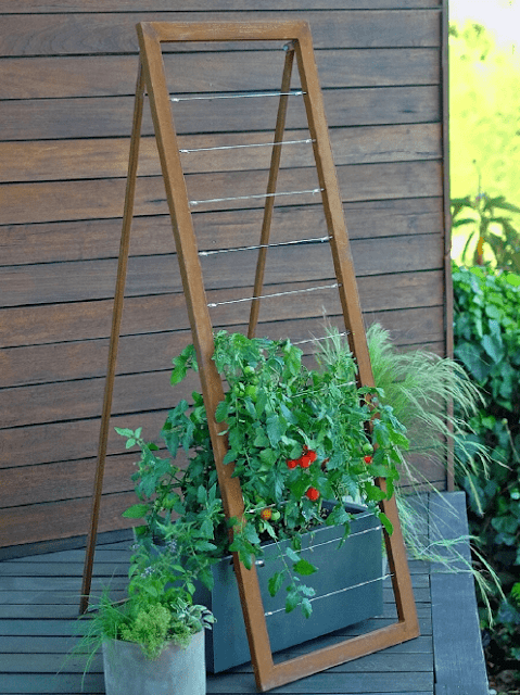 Garden Trellis Ideas That are Inexpensive and Look Great