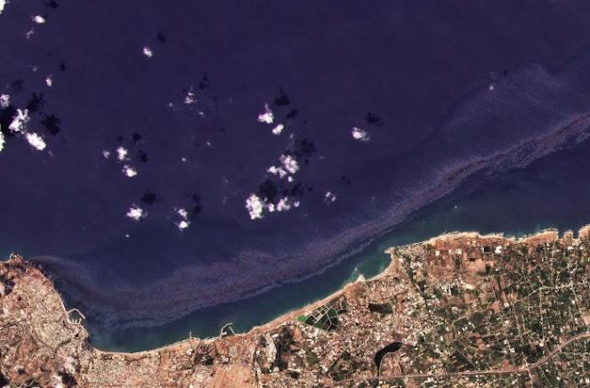 Enorme marea nera di petrolio al largo della Siria. Wwf: «Grande preoccupazione»