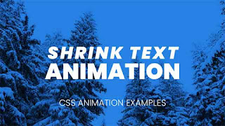 shrink text css animation