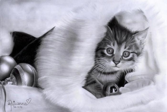 Рисунки карандашом. Rajacenna 5