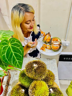 Orange Fleshed Durian, Different Durian Varieties