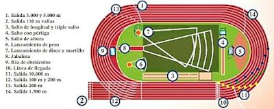 Resultado de imagen de atletismo estadio