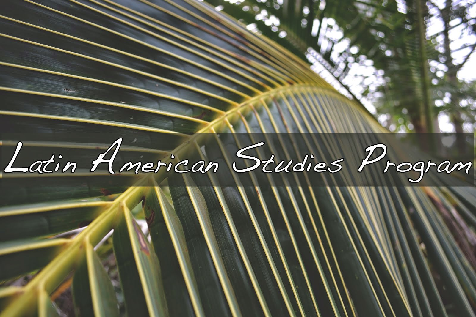 Latin American Studies Program