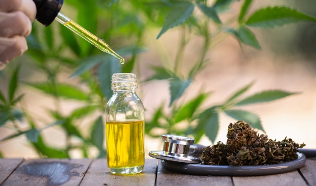 Benefits and Uses of CBD Oil, Plus Side Effects