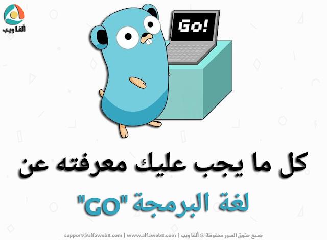 ما هي لغة البرمجة GO