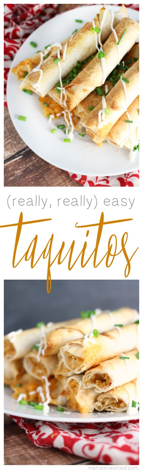 Easy Taquitos Recipe
