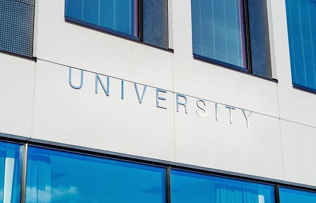 University, Degree,
