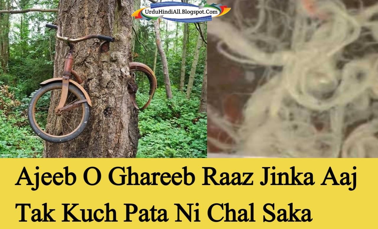ajeeb-o-ghareeb-waqiat-unexplained-urdu-hindi