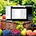 Samsung A20e A202F Bit 2 Unlock Network | Mở Mạng