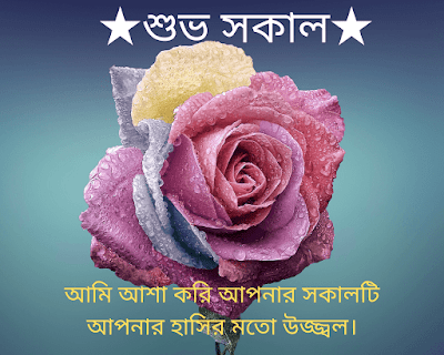 Bengali Good morning Wishes Images