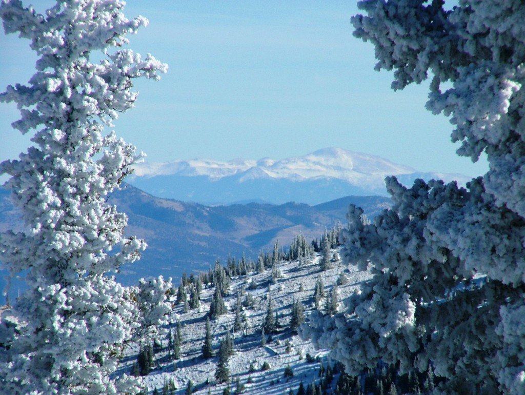 Critter Sitter S Blog Snowy Colorado Mountains