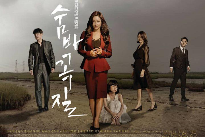 Download Drama Korea Hide and Seek Sub Indo Batch