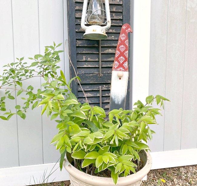 Garden gnome in a planter
