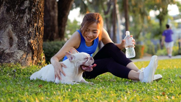 benefits of having a class pet