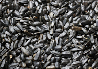 Sunflower Seeds-high uric acid foods