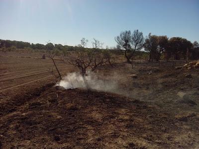 Incendio montes de Zuera 21/08/2016