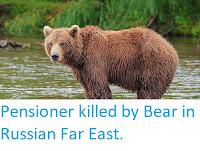 https://sciencythoughts.blogspot.com/2019/08/pensioner-killed-by-bear-in-russian-far.html