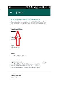 Whatsapp tidak terlihat online