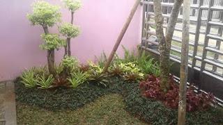 Tukang Taman | Jasa Bikin Taman | Pasang Rumput Taman
