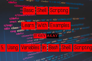 variables in shell scripting
