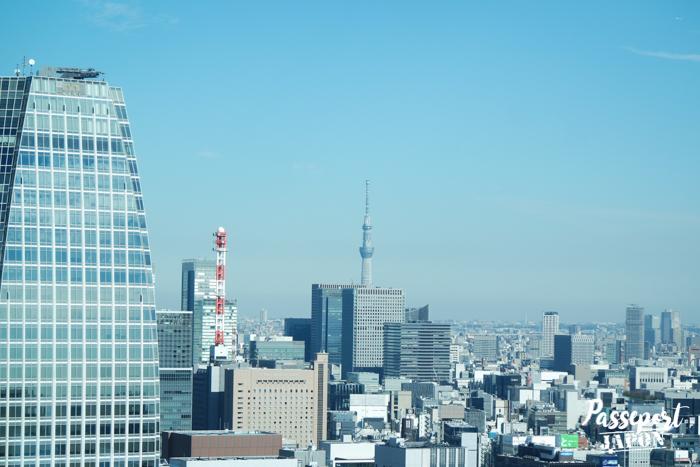 Vue sur la Skytree depuis la Tokyo Tower