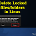 How to delete locked files or folder in Linux