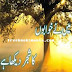 Maine Khwabon ka Shajar Dekha hai pdf download
